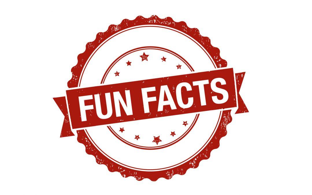 Fun Insurance Facts
