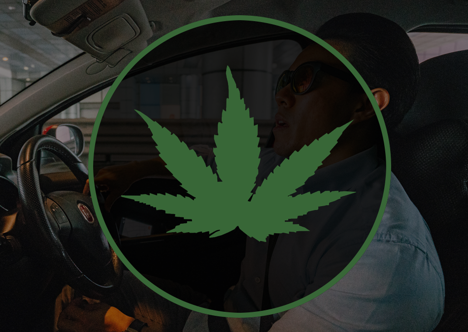 How Will Michigan's Marijuana Law Impact Your Car Insurance?